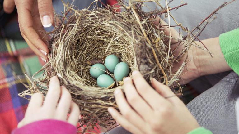 【医師監修】「排卵日」を知ることは妊活の第一歩