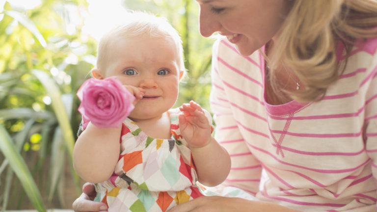 【医師監修】体外受精、着床前診断なら産み分けはできるの?